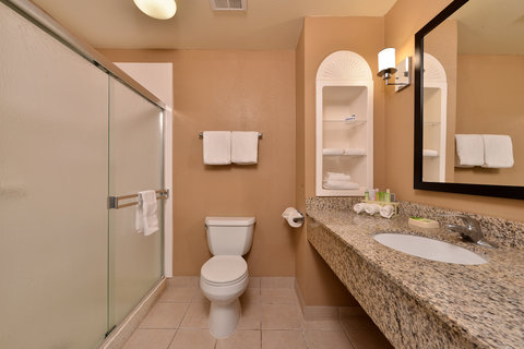Holiday Inn Express & Suites FRESNO (RIVER PARK) HWY 41 - Guest Bathroom