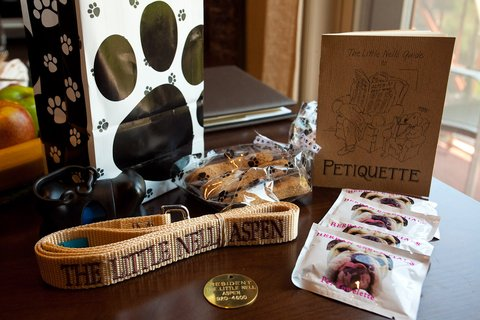 The Little Nell - Pet Amenity