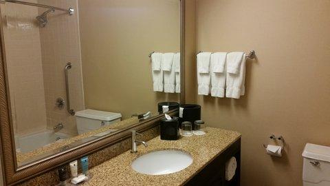 Crowne Plaza DALLAS-MARKET CENTER - Guest Bathroom