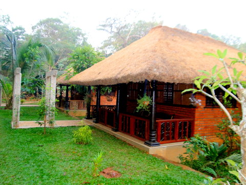 Wild Woods Spa and Resort - Bamboo Cottage