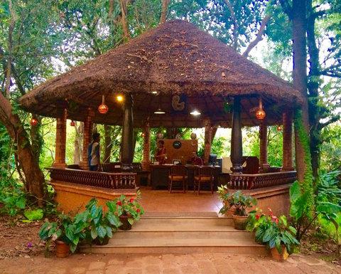 Wild Woods Spa and Resort - Lobby