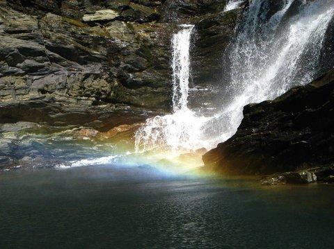 Wild Woods Spa and Resort - Waterfalls Near Resort