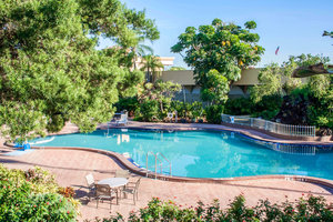 Pool - Clarion Hotel & Conference Center Tampa