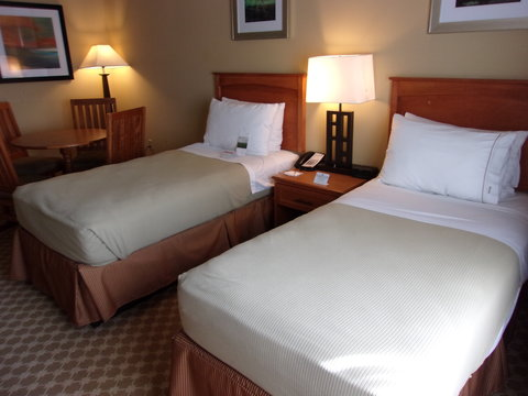 Holiday Inn Express & Suites CHICAGO WEST-ROSELLE - Family Suite