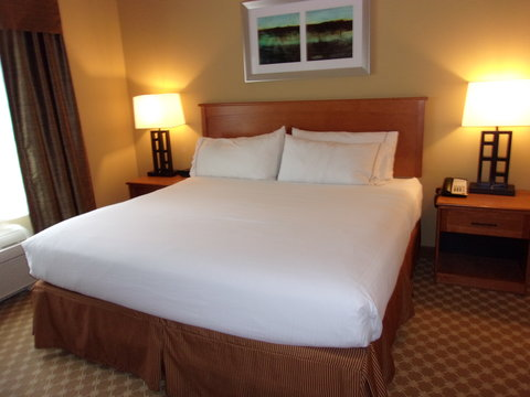 Holiday Inn Express & Suites CHICAGO WEST-ROSELLE - Guest Room