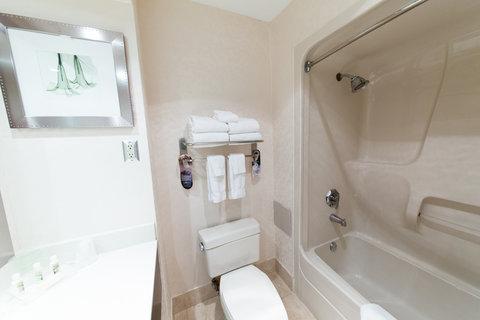 Holiday Inn Hotel And Suites Windsor Ambassador Bridge - Bathroom Amenities