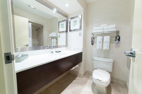 Holiday Inn Hotel And Suites Windsor Ambassador Bridge - Guest Bathroom