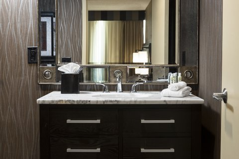 Holiday Inn Hotel & Suites DES MOINES-NORTHWEST - Guest Bathroom Amenities