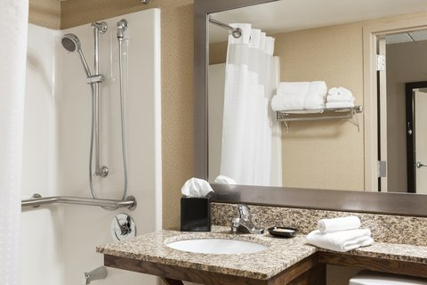 Holiday Inn Hotel & Suites DES MOINES-NORTHWEST - Accessible Guest Bathroom