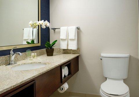 Holiday Inn OPRYLAND-ARPT (BRILEY PKWY) - Bathroom