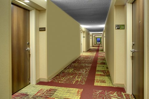 Hampton Inn Greenville-Woodruff Road - Hallway