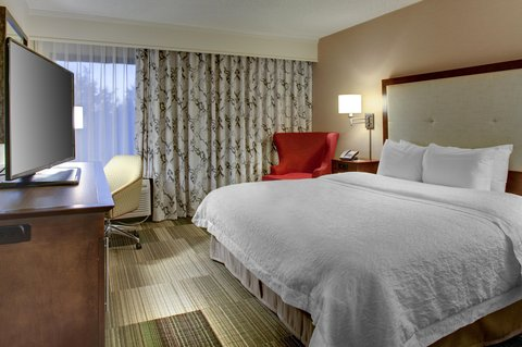 Hampton Inn Greenville-Woodruff Road - King Studio Suite