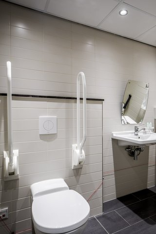 Holiday Inn EINDHOVEN - Wheelchair accessible bathroom