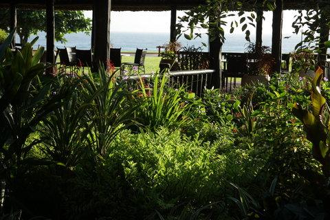 Sea Cliff Hotel - View