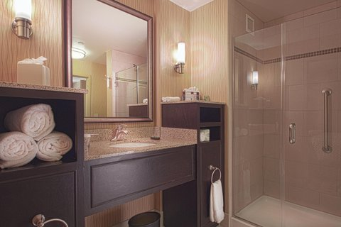 Embassy Suites Columbus - Airport - Bathroom with shower