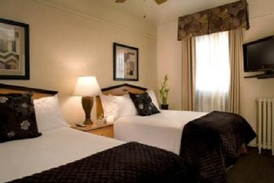 City Suites Hotel - Guest Room