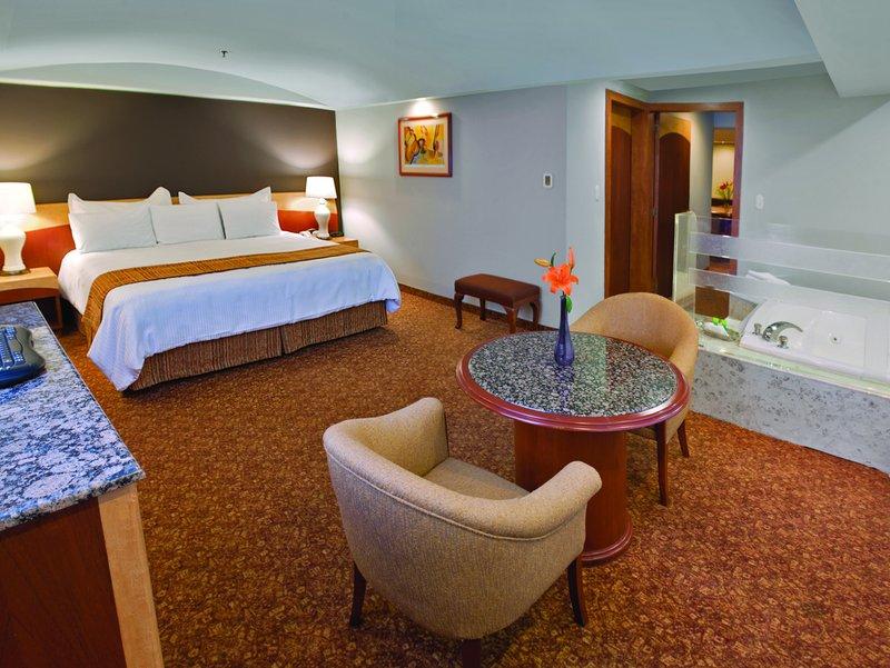 Radisson Hotel Flamingos 套间