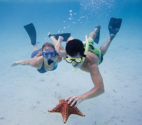 Tiamo Resort - Sea Star
