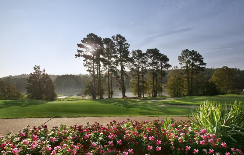 Cypress Bend Resort 其他