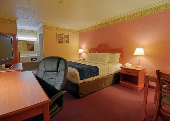 Comfort Inn & Suites - Quakertown, PA