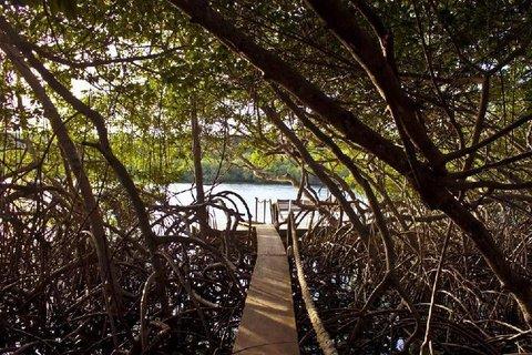Cocoliso Isla Resort - Exterior