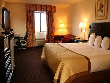 Baymont Inn & Suites Battle Creek Downtown - Standard King Room