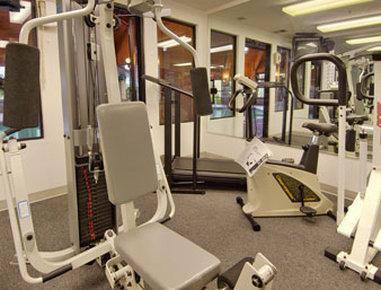 Baymont Inn & Suites Battle Creek Downtown - Fitness Center