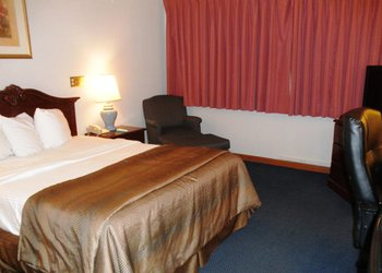 Quality Inn & Stes - Room
