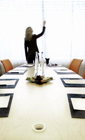 拉迪森萨斯机场酒店 - Board room meetings
