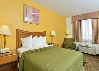 Quality Inn & Suites Universal Studios - Room