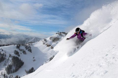 The Hostel - Ski