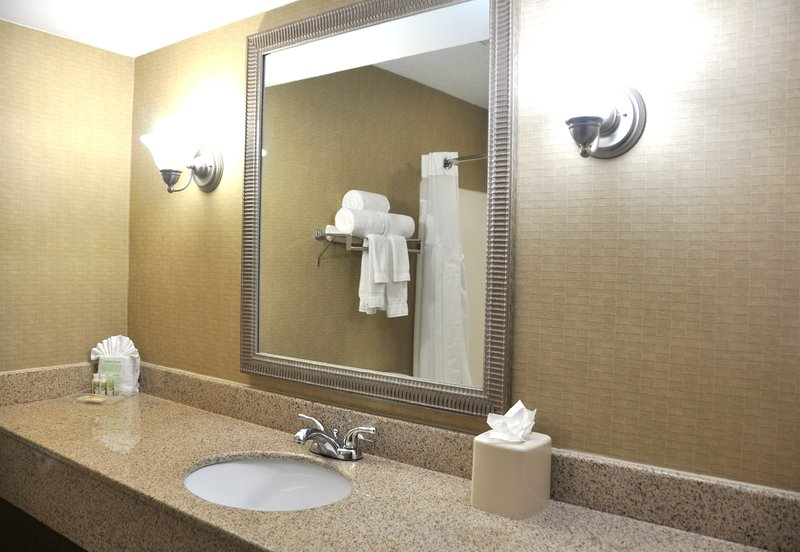 Holiday Inn Houston-Hwy 249 North Rum