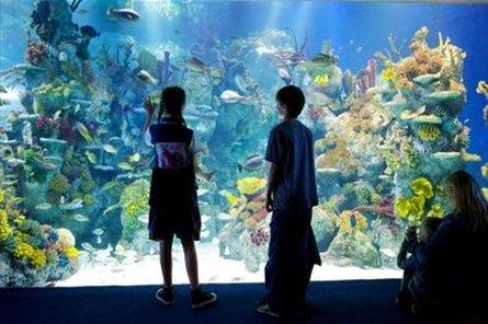 Future Inn Bristol - Bristol Aquarium