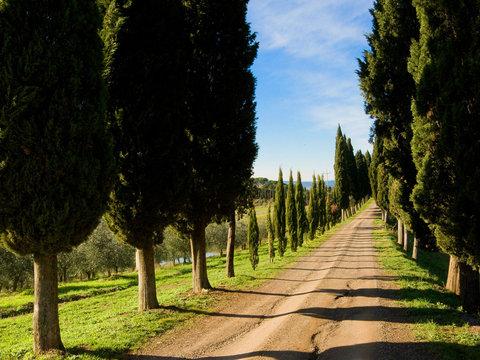 Villa Armena - Road to the hotel
