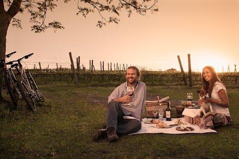 Narbona Wine Lodge - Picnic en los Vi edos - Picnic in Vineyards