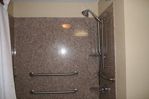 Holiday Inn Express & Suites GREENVILLE - ADA Bathroom  2