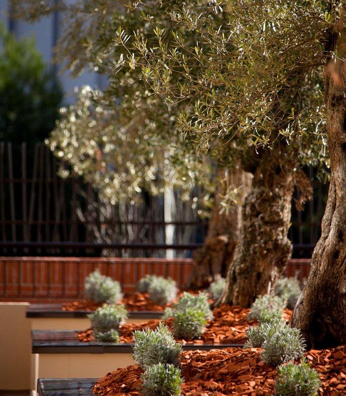 Renaissance Aix-en-Provence Hotel Sonstiges
