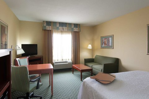 Hampton Inn - Suites El Paso West - King Sofabed