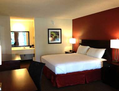 Quality Inn Airport - One King Bed Room
