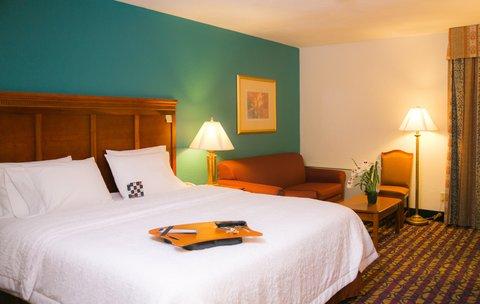 Hampton Inn Dallas-North-I-35E At Walnut Hill - King Bed Room