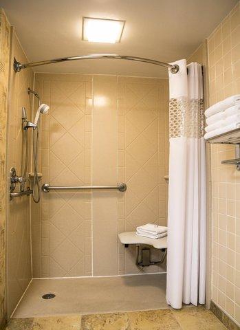 Hampton Inn Dallas-North-I-35E At Walnut Hill - Accessible Shower
