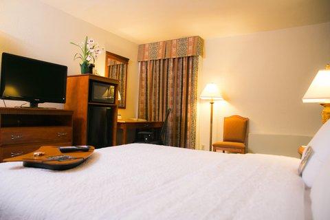 Hampton Inn Dallas-North-I-35E At Walnut Hill - King Room