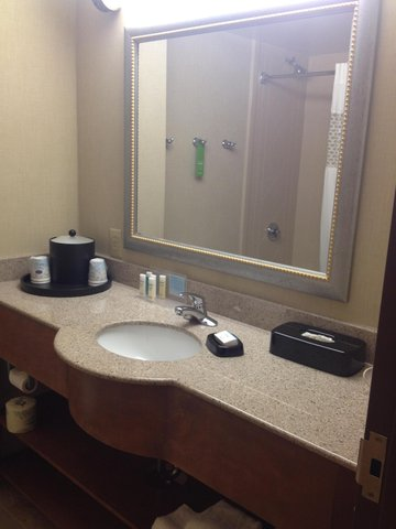 Hampton Inn-Birmingham I-65-Lakeshore Dr - Bathroom