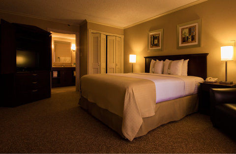 Holiday Inn EL PASO-SUNLAND PK DR & I-10 W - Tastefully appointed suite with one king size bed
