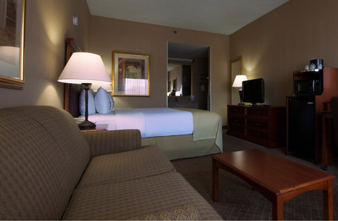 Holiday Inn EL PASO-SUNLAND PK DR & I-10 W - Relax and unwind on your sofa sleeper at our El Paso hotel