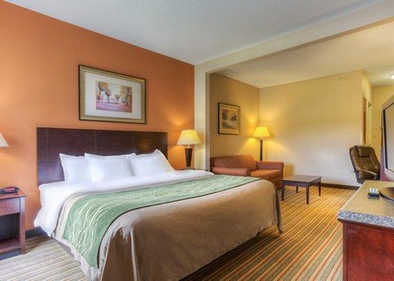 Comfort Inn & Suites Suite