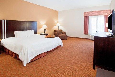 Hampton Inn Niagara Falls - King ADA