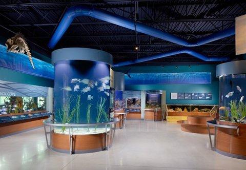 Courtyard Palm Beach Jupiter - S  Florida Science Center   Aquarium
