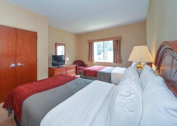 Comfort Inn & Suites Hawthorne 客室