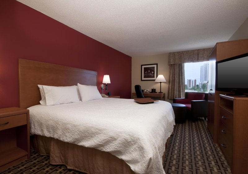 Hampton Inn Atlanta-Buckhead Vista do quarto